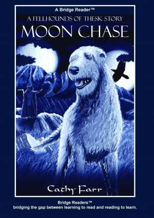 Moon Chase Bridge Reader 9780992850906front cover